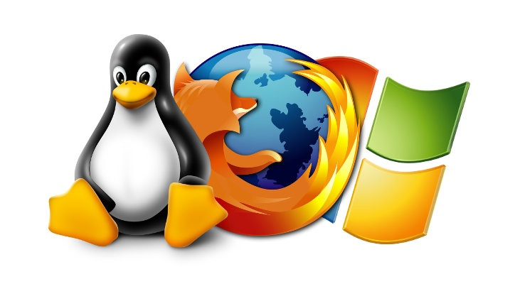 How to Use Same FireFox Profile in Dual Boot Linux (Ubuntu) Windows installation